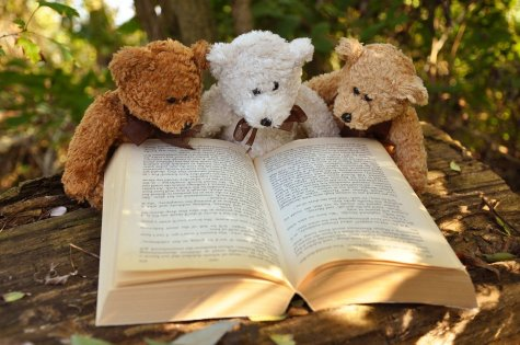 Three Teddy Bears Reading