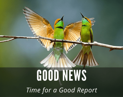 Recipient of Good News: Time for a Good Report