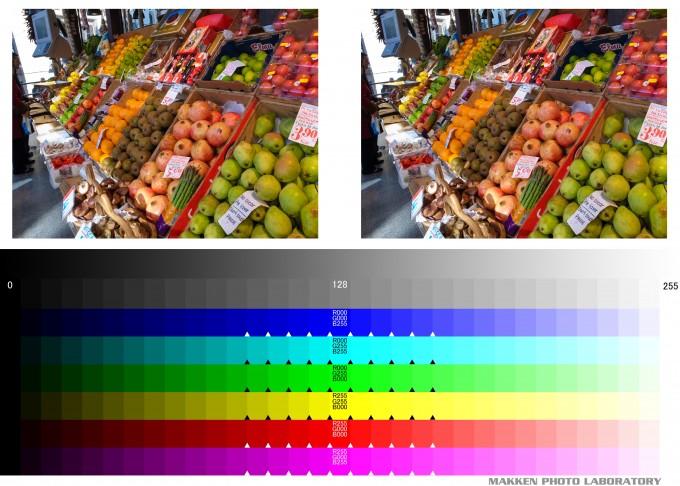 ネットプリント比較用 カラーチャート