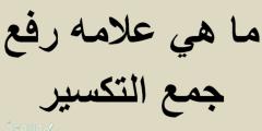 ما هي علامه رفع جمع التكسير