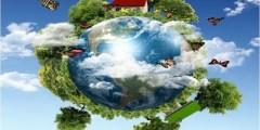 جميع الانظمة البيئية على الارض تكون الغلاف