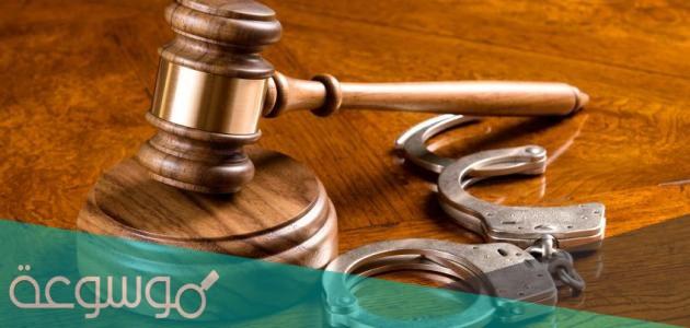 نسبة القبول في تخصص القانون