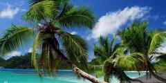 اين تقع جزيرة ماهي