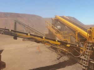 MAX Plant Rental Mobile Screen