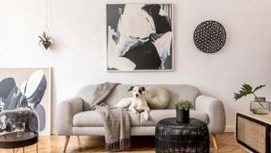 Top 10 Best Black Friday Sofa Deals 2021