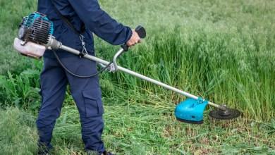 Top 10 Best Black Friday Deals On Grass Trimmers Deals 2021