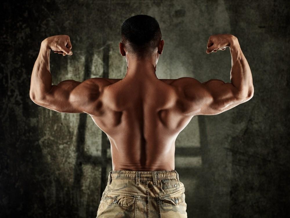 鍛え抜かれた背中の筋肉