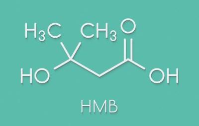Beta-hydroxy beta-methylbutyric acid (HMB) leucine metabolite molecule. Used as supplement, may increase strength and muscle mass. Skeletal formula.