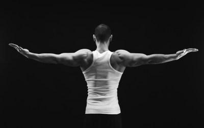 肩甲下筋を象徴するイメージ