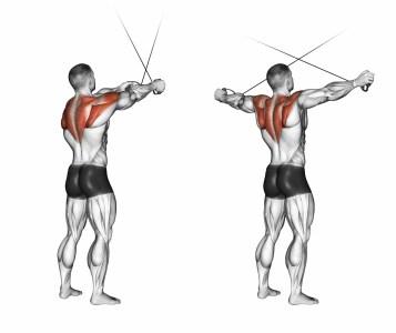 ケーブルを使った棘下筋のトレーニング図