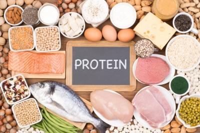 タンパク質が効率的に取れる食べ物