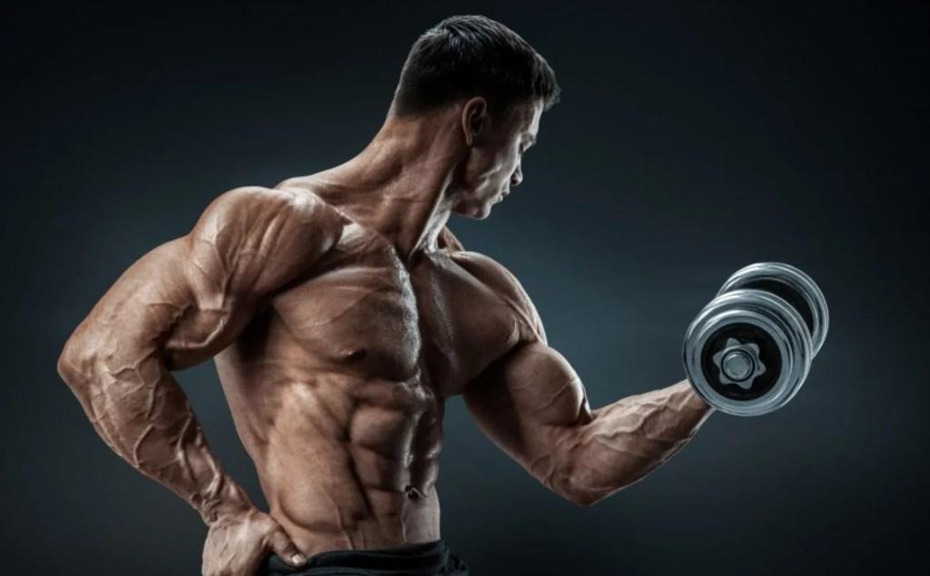 do legal steroids work