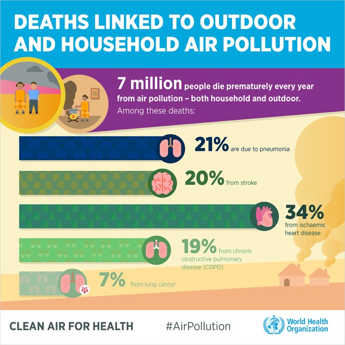 Air Pollution due to Short Sea Shipping
