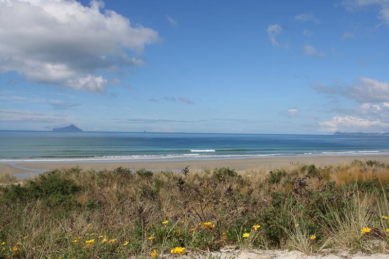 Ruakaka Beach, Northland
