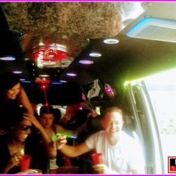 Party bus hotline