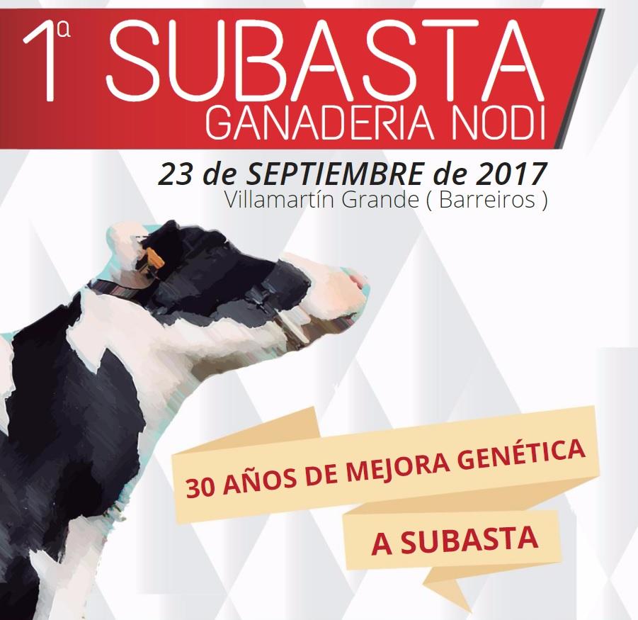 subasta-nodi-maxideza
