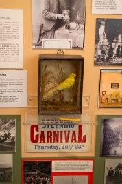 Steyning Museum-17