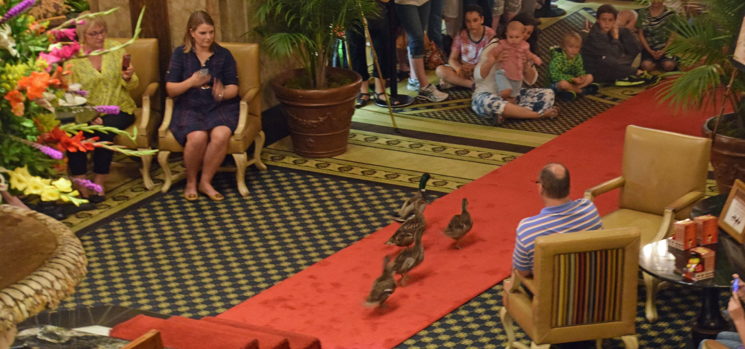 The Duck Walk at The Peabody Hotel, Memphis