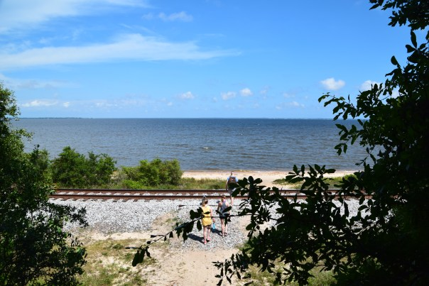 Bay Bluffs Park, part of the Scenic Bluffs Preserve, protects the highest coastal area of Florida. Right on Florida Scenic Highway 90, along Escambia Bay.