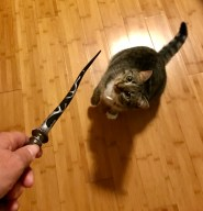Can you guess which character had a wand like this? Pippi thinks it's one of the Hogwarts professors.