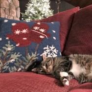 Pippi takes a break.