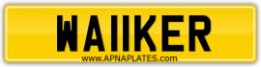 WA11KER \ WANKER or WALKER number plate !