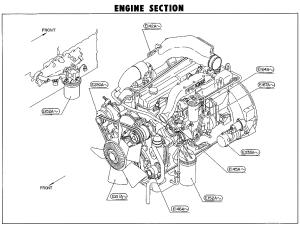 Nissan Truck Parts  CGB45A PF6TC Diesel Engine   Maxindo