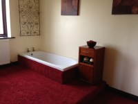Why Brits have carpet in the bathroom? | Maxi power cleaning