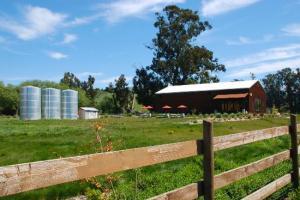stolo-family-winery-vineyards