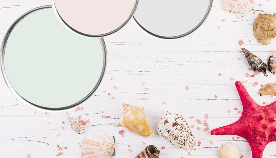 pitture murali per interni cartella colori bianco 2022. Maxmeyer