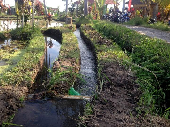 Ирригационная система рисовых террас  позволяет перенаправлять и перекрывать воду в нужный момент.