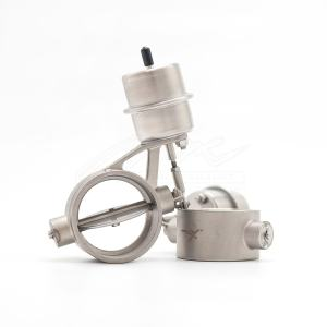 exhaust valve main