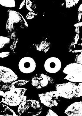 Elikkäs Elli Oravainen, käytän myös nimimerkkiä Kiia, elli.susanna.oravainen@gmail.com. Lähinnä töitä löytää tällä erää Valheiden kansa -albumista. Sarjakuvablogi Aamuyökahvit (http://aamuyokahvit.sarjakuvablogit.com) pitäisi ehkä tämän myötä taas lämmittää.