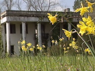 Sweet Home Alabama - 19th century homes in Alabama