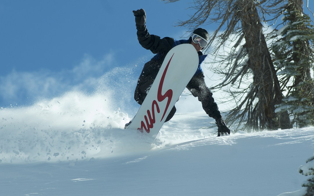 18/19 SIMS Snowboards