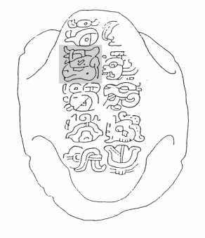 Figure 5. Incised turtle shell with name highlighted in grey-tone (Drawing by Linda Schele).