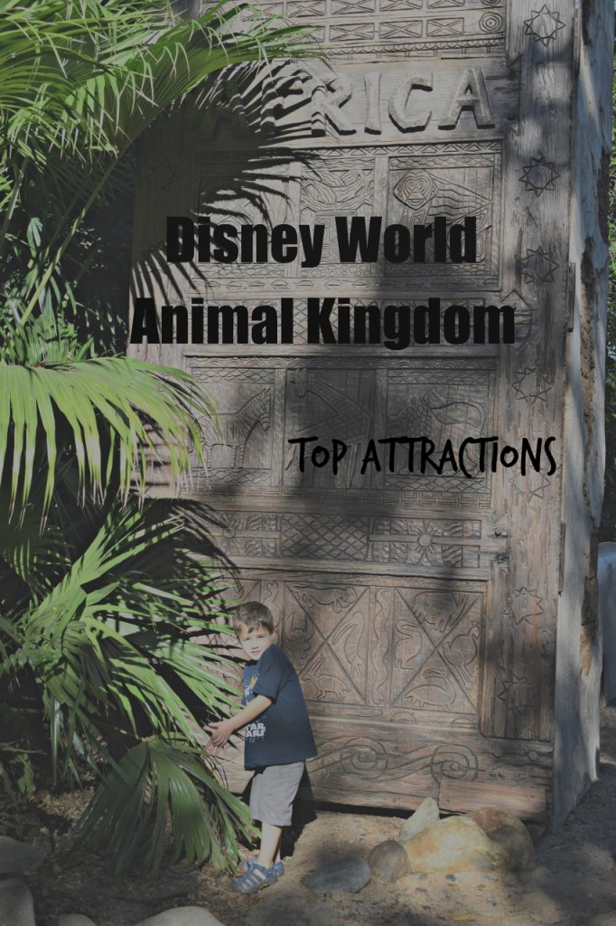 WDW Animal Kingdom top attractions (853x1280)