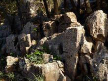 01 P1020205 route lluc rochers karstiques
