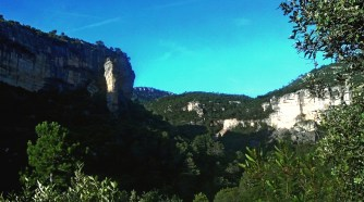 2014-07-12 Ruta dels Refugis (128) Desencorada dels Castillans
