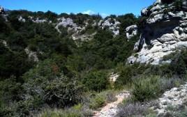 2014-07-12 Ruta dels Refugis (42) Portell de L Aberella