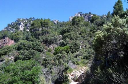 2014-07-12 Ruta dels Refugis (5) Montée Mussara