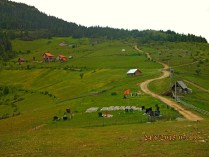 IMG_1163Pepaj joli cimetiere monument morts albanais