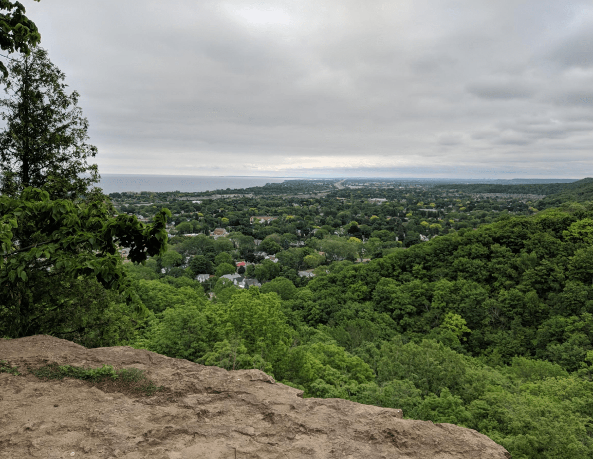 Grimsby Lookout