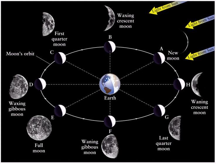 Fase  Fase Bulan  Fuansashare