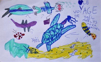 tortues de Yael (2)