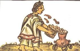 palomitas-de-maiz-codice-prehispánico