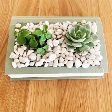 DIY Book Craft Planter
