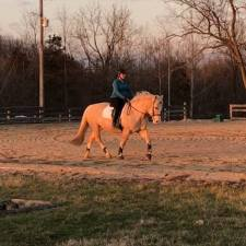 sunset-trot