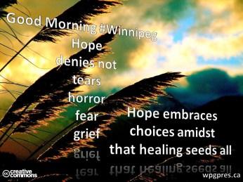 Healing Seeds All