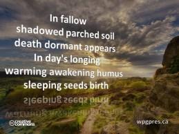 Sleeping Seeds